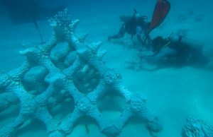 Artificial Underwater 3d printed Coral